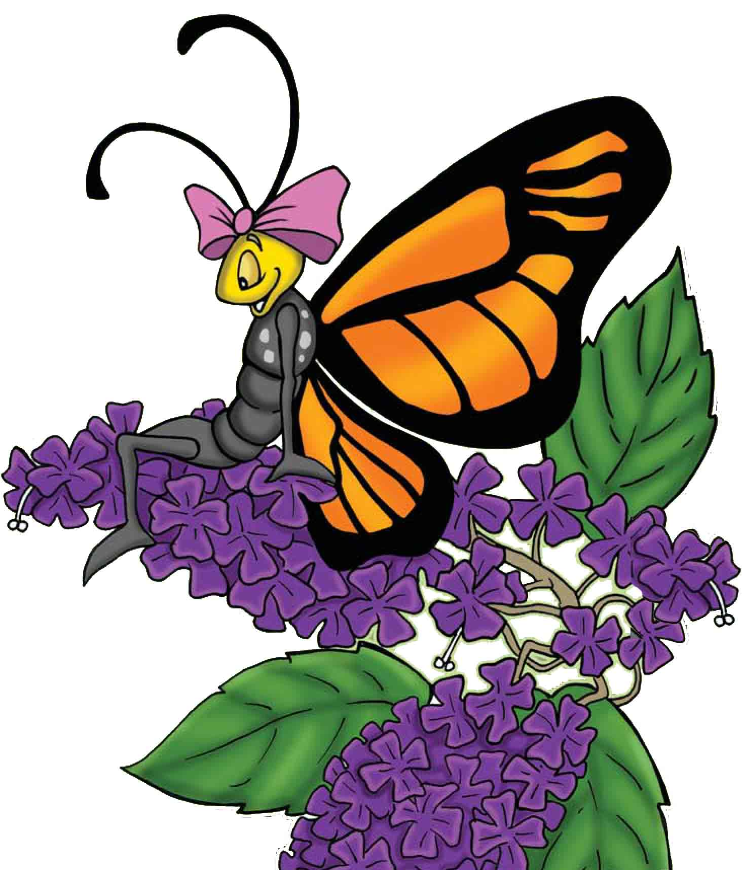 Henrietta Butterfly - of Henrietta's Garden